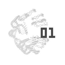 Head identité koopski raphael panerai graphiste paris webdesign illustration