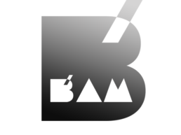 logo bam festival koopski raphael panerai