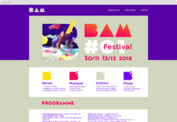 BAM festival webdesign, koopski raphael panerai
